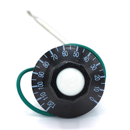 Термостат капілярний  FSTB 120 °C
