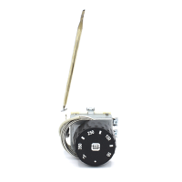Термостат капілярний  двополюсний TC-1R21PM MMG-2/350°C