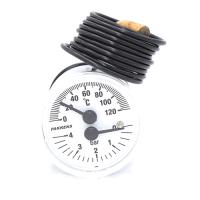 Термоманометр Pakkens діаметр 40 мм 120 ° C 0-4 бар
