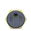 ТЭН Thermowatt прямой медный  1000W  для чугунных батарей правая резьба