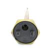 ТЭН Thermowatt прямой медный  2500W  для чугунных батарей правая резьба